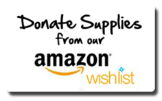 donate-amazon-wish-list